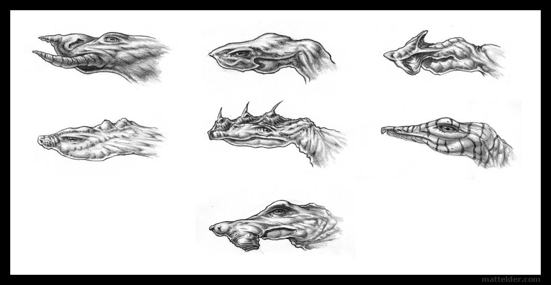 lizardsheaddesignstudies_mattelder