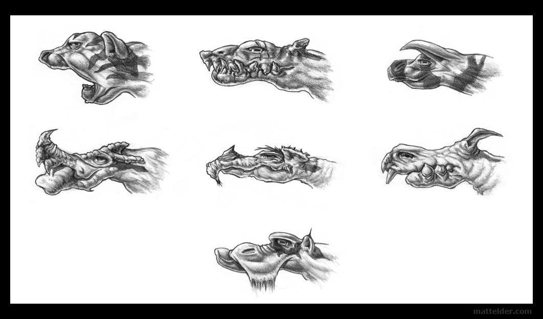 mammalsheaddesignstudies_mattelder