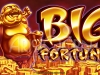 Big Fortune Slot / Pokie / Fruit / Gaming / Poker Machine